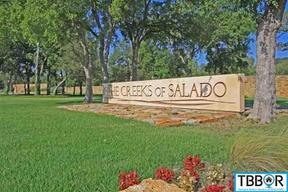 2013 The Creeks Drive Salado