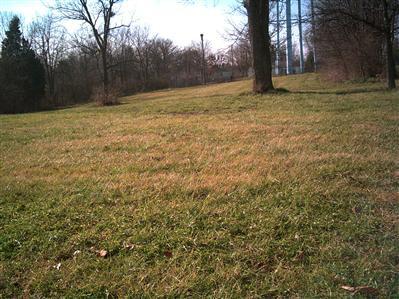 29 Magnolia Avenue, Millersburg KY 40348