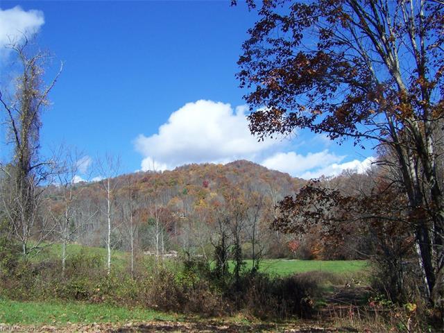 315 Mountain Park Drive # 5, Mars Hill NC 28754