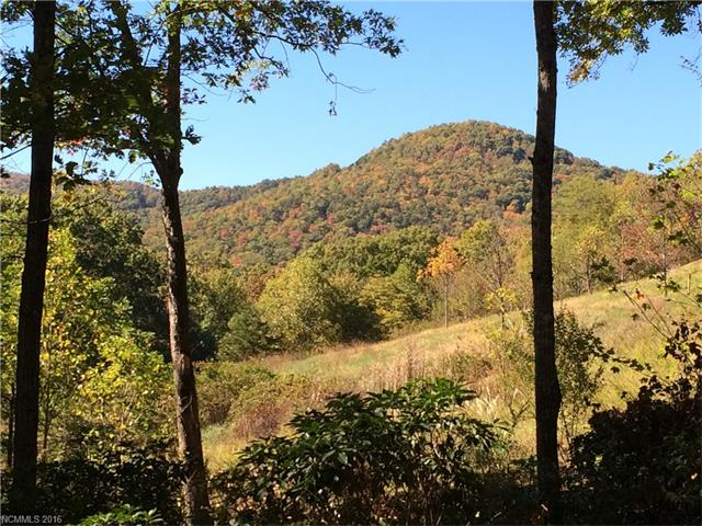 16 Smokey Ridge Trail # Lot 172, Arden NC 28704