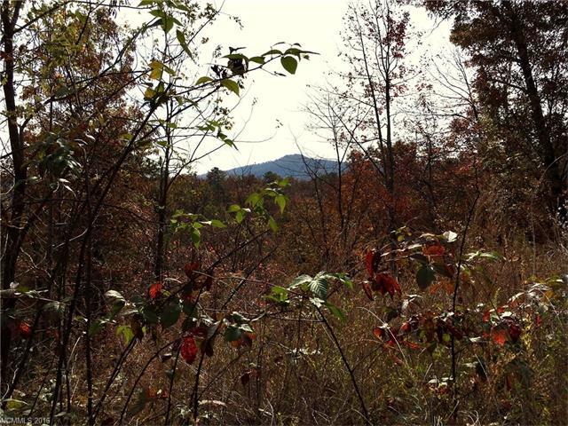 99999 Catawba Falls Parkway # 186, Black Mountain NC 28711