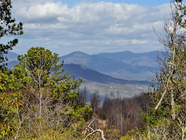 66 Star Crest Lane # 19, Black Mountain NC 28711