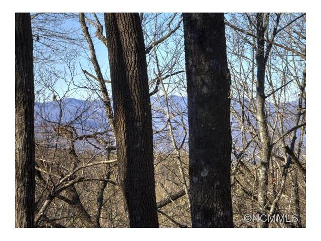 600 Lost Mine Trail, Brevard NC 28712
