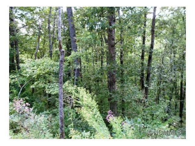 0 Spy Pointe Ln Lot 13, Fairview NC 28732
