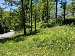 99999 Winding Ridge Road # 2 Fairview