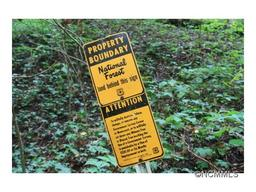 TBD - 22.19 Acres Sugar Loaf Mountain Road Marshall