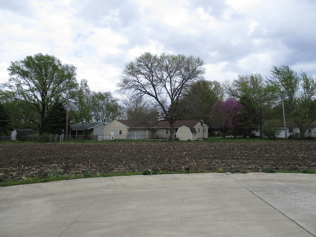 Lot 8 Fina Drive, Tuscola, IL, 61953 Photo 1