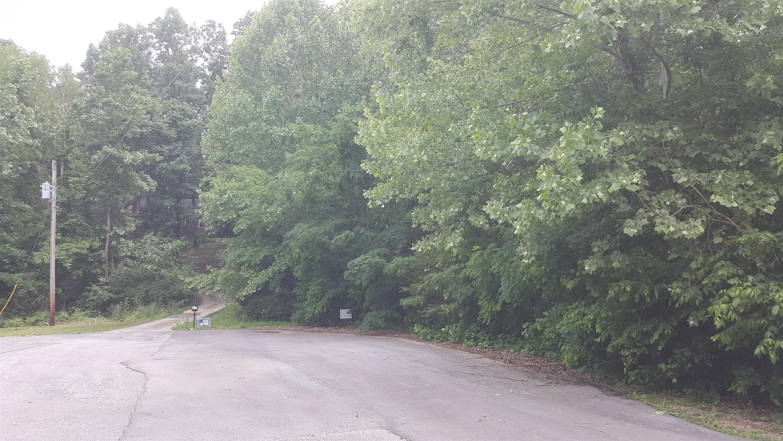 0 Cedarview Dr Lot#13, Charlotte TN 37036