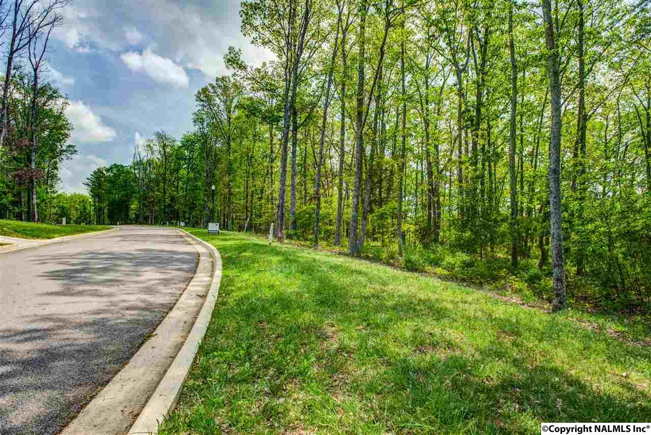 3 South Bluff Trail, Huntsville AL 35803