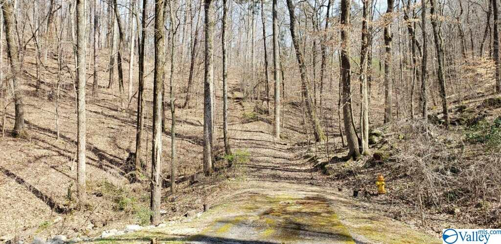 Northwoods Trail, Gadsden AL 35901
