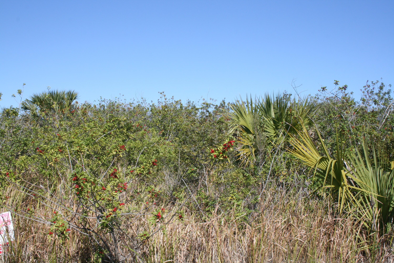 2871 Sw Glenrock Road, Palm Bay FL 32908