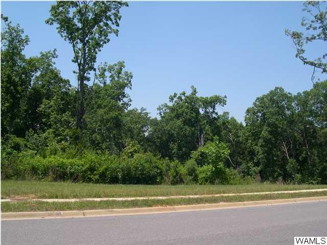 1720 Lake Haven Circle # 24, Tuscaloosa AL 35406