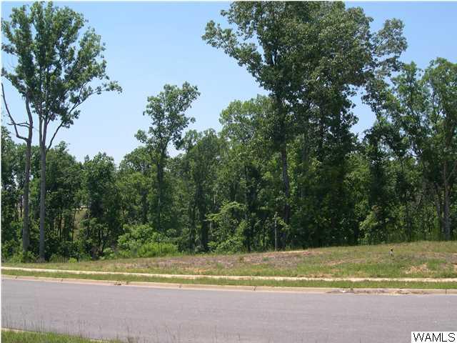 1740 Lake Haven Circle # 23, Tuscaloosa AL 35406