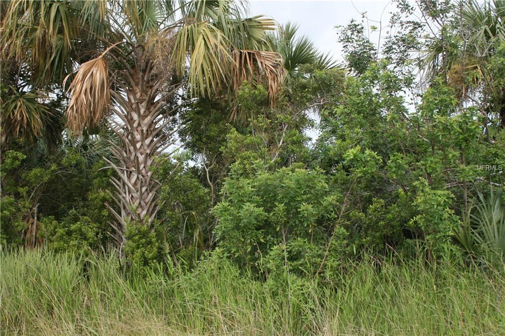 821 Kimberly Road Sw, Palm Bay FL 32908