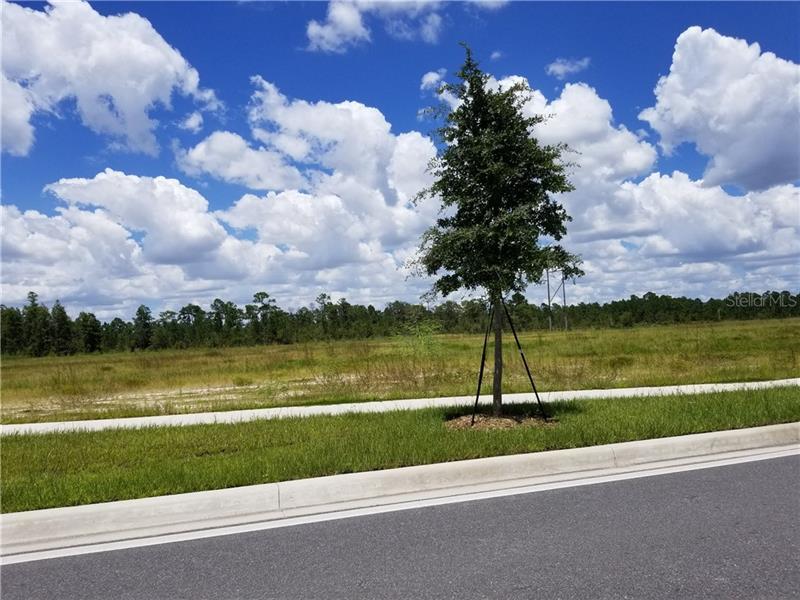 S Apopka Vineland, Orlando FL 32821