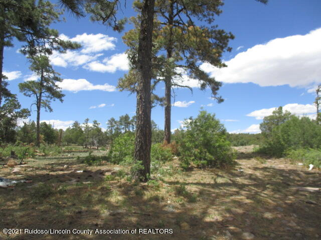 280 Indian Divide Rd, Capitan NM 88316