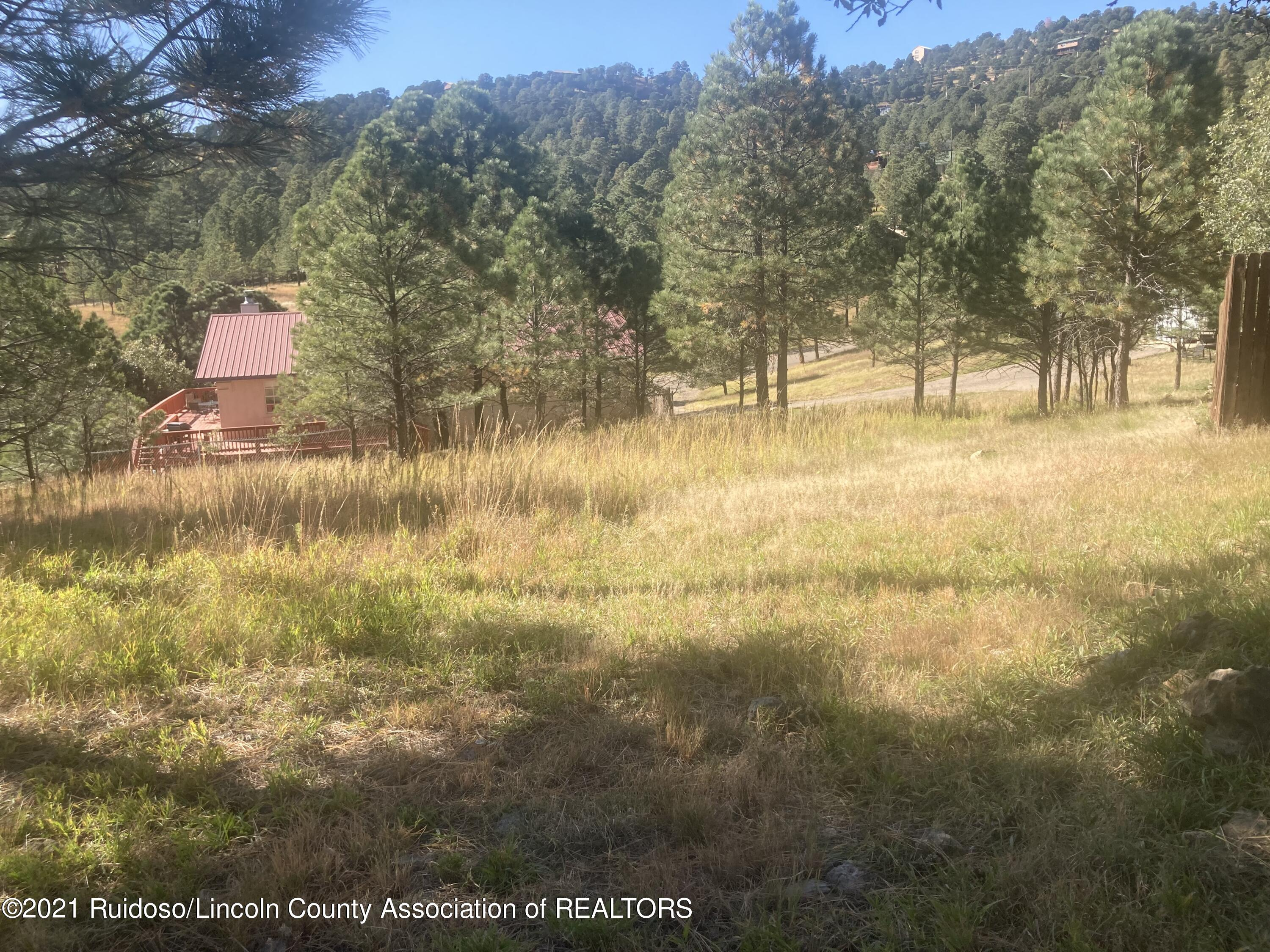 108 S South Slope Court Ruidoso