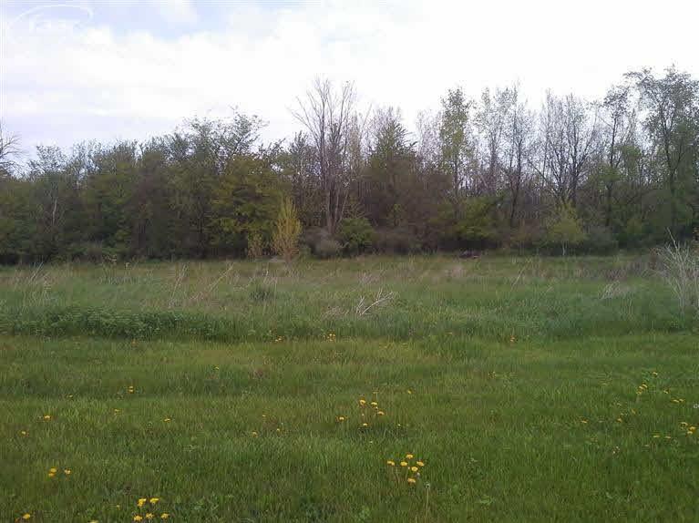 5202 Amelia Earhart Drive, Linden MI 48451