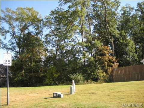 48 Macallister Ridge, Millbrook AL 36054