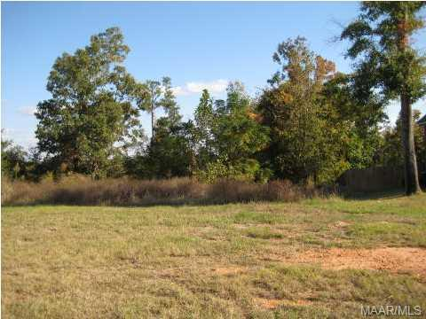 136 Macallister Ridge, Millbrook AL 36054