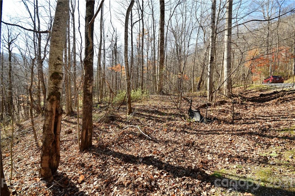 #19 Lot Tranquility Trail # -#19, Maggie Valley NC 28751