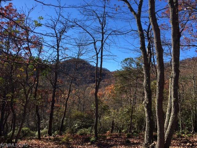 60 Smokey Ridge Trail # 198, Arden NC 28704