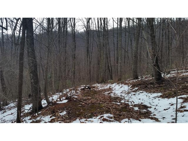 Tbd Verbena Drive # Cc13, Black Mountain NC 28711