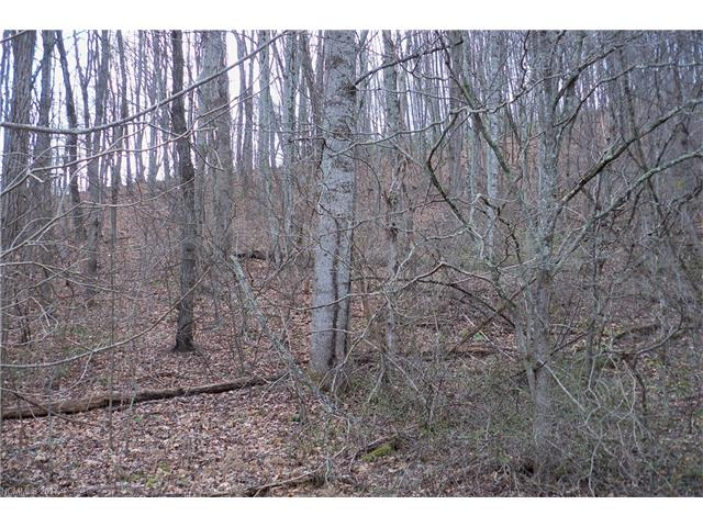 Lot 61 Turn-a-bout Court, Waynesville NC 28785