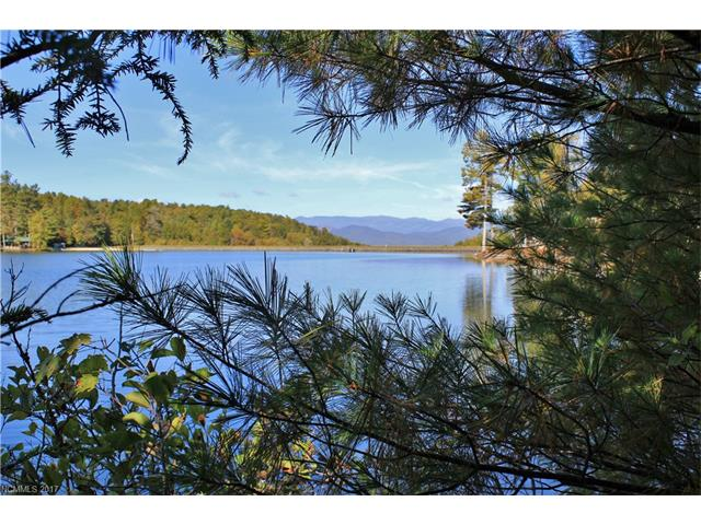 Lot 134 Eagle Lake Drive, Brevard NC 28712