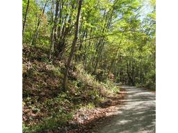 0000 Pinners Cove Road # 9 Asheville